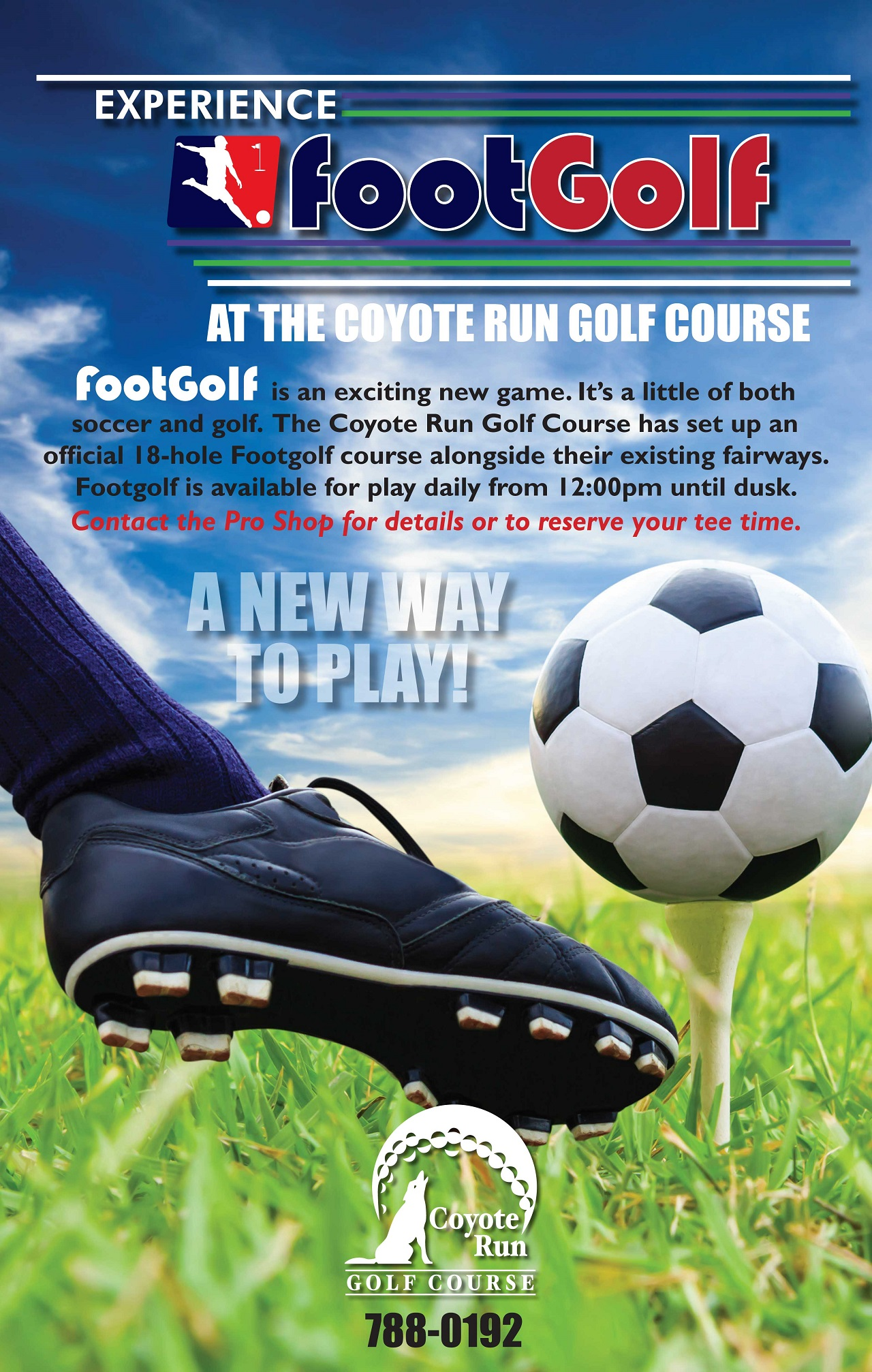 FootGolf-poster